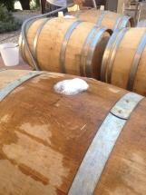 Picpoul en fermentation